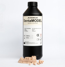 Asiga DentaMODEL 1 kg Bottle